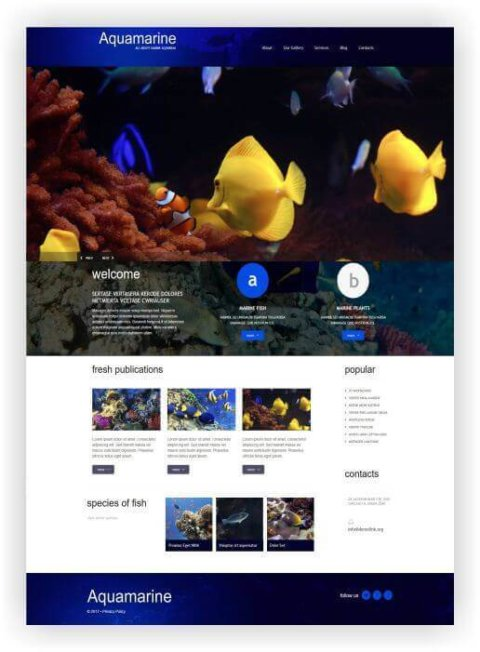 WordPress Thema für Salzwasser Aquarium