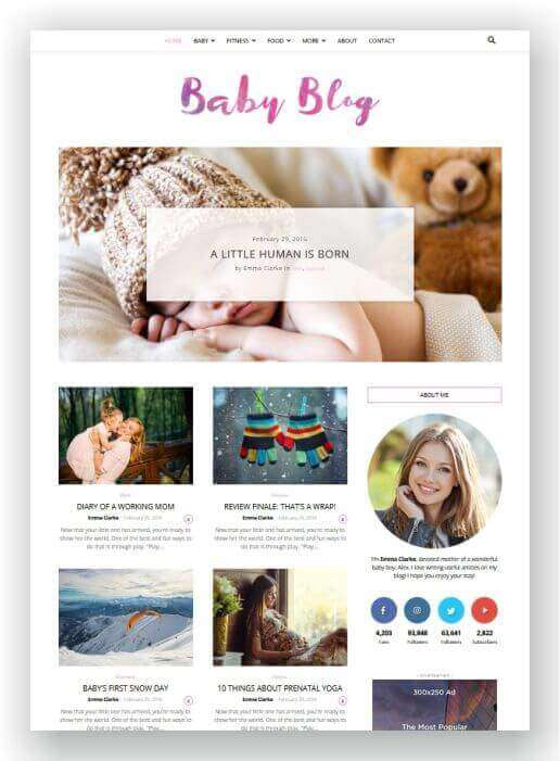 Blog WordPress bebê