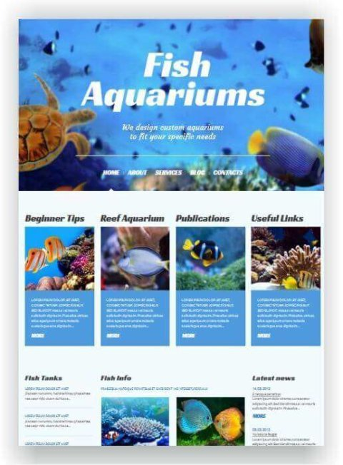 WordPress Blog für Aquarium
