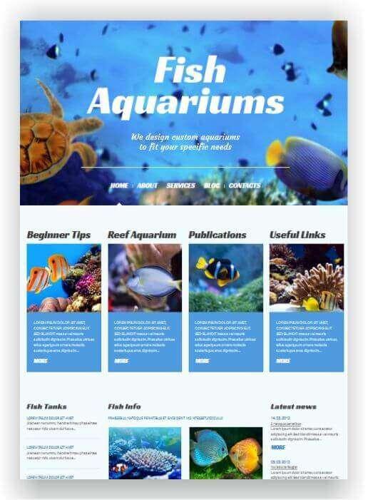 Webseite für Aquarien
