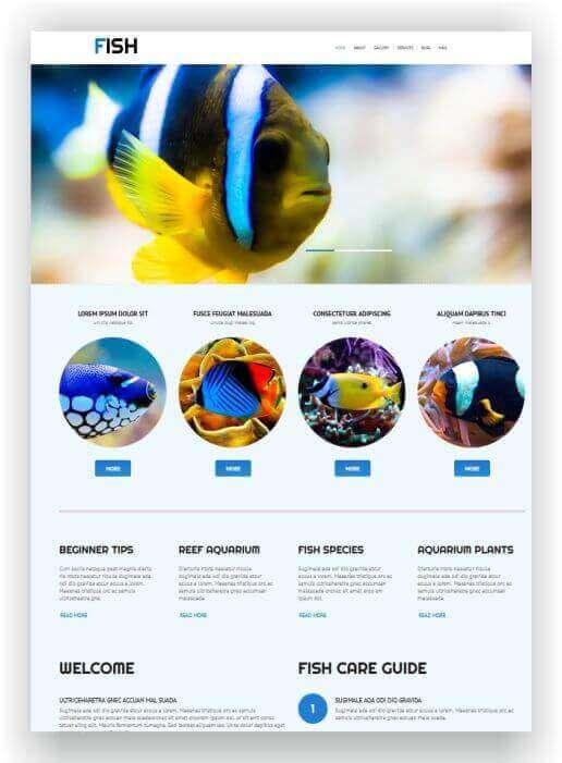 Wordpress Theme für Fische