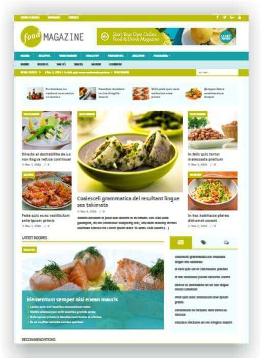 Wordpress Theme Food Magazine