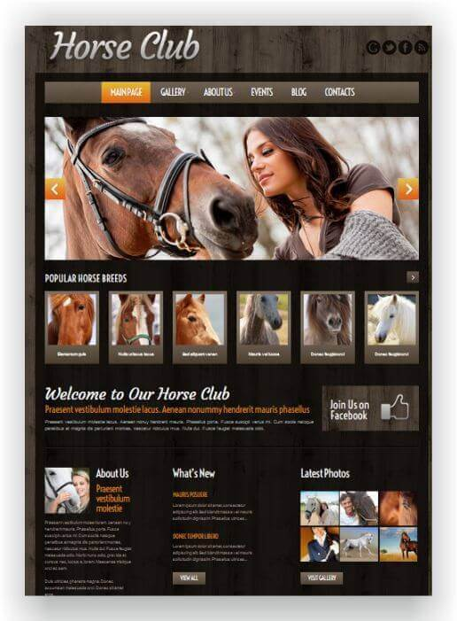Wordpress Theme für Reitclub