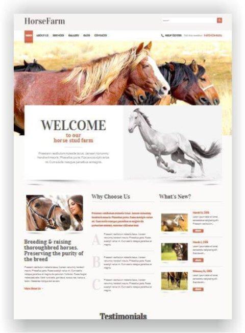 WordPress para centro equestre