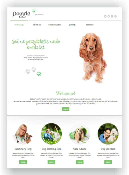 WordPress Escola de Cães