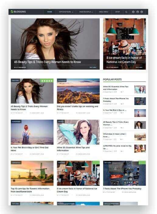 Einfaches WordPress Theme für Blog