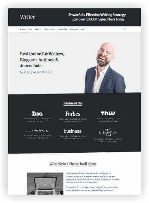 wordpress blog tema writer