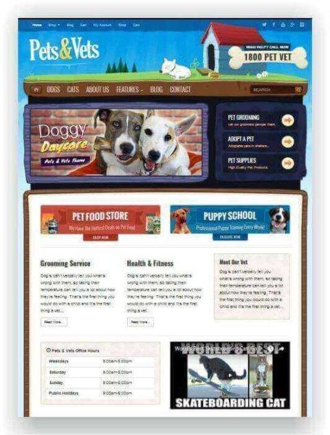 WordPress website for vet