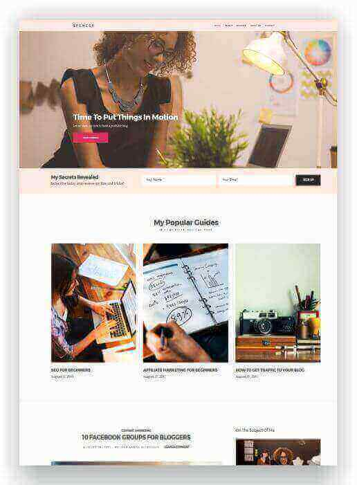WordPress Blog und Business Theme